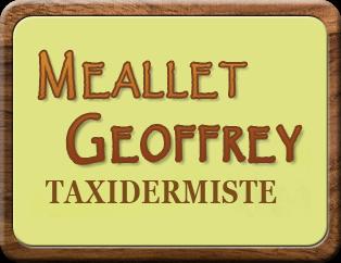 Meallet Geoffrey
